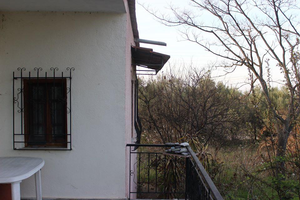 LEPTOKARIJA na prodaju kuća 85m² sa maslinjakom